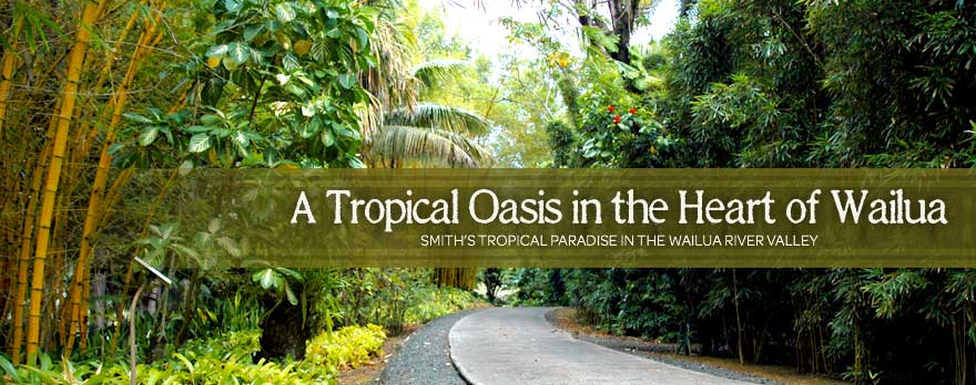 Smith's Tropical Paradise