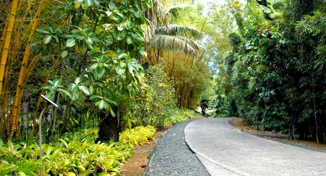 Smith's Garden Path